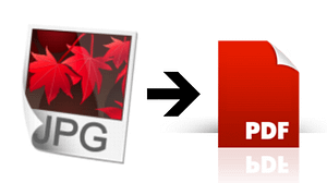 Read more about the article How To Convert Image To PDF For Free Using Mobile or Laptop: Easy Steps